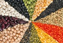 2016: l'anno dei legumi